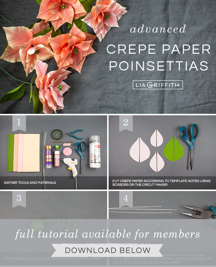 Photo tutorial for pink crepe paper poinsettia plants by Lia Griffith