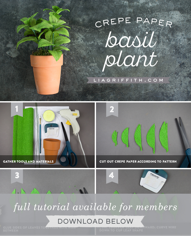 crepe paper basil plant tutorial by Lia Griffith