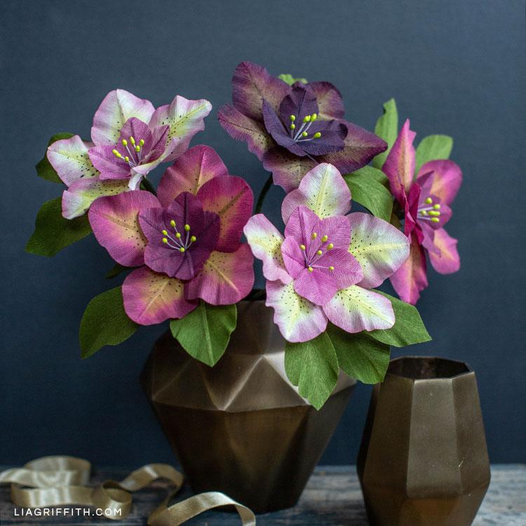 Hellebores flowers in geometric vase