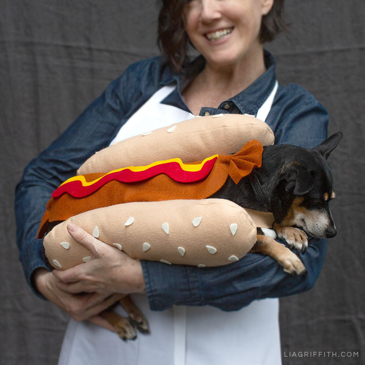 Lia Griffith holding dog wearing DIY hot dog costume for Halloween