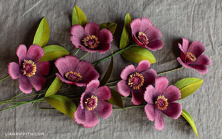 crepe paper chocolate cosmos flowers