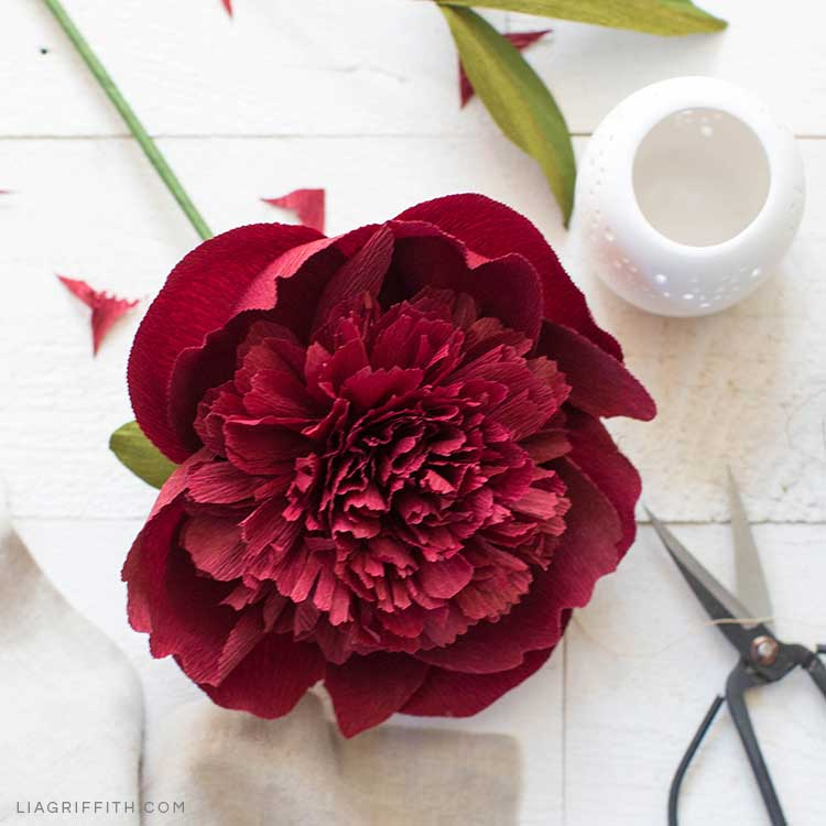 crepe paper red charm peony next to white vase and scissors