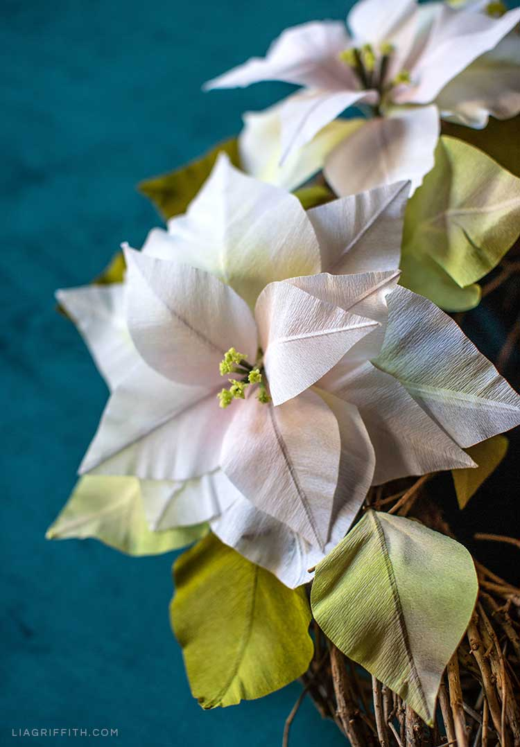 white crepe paper poinsettias