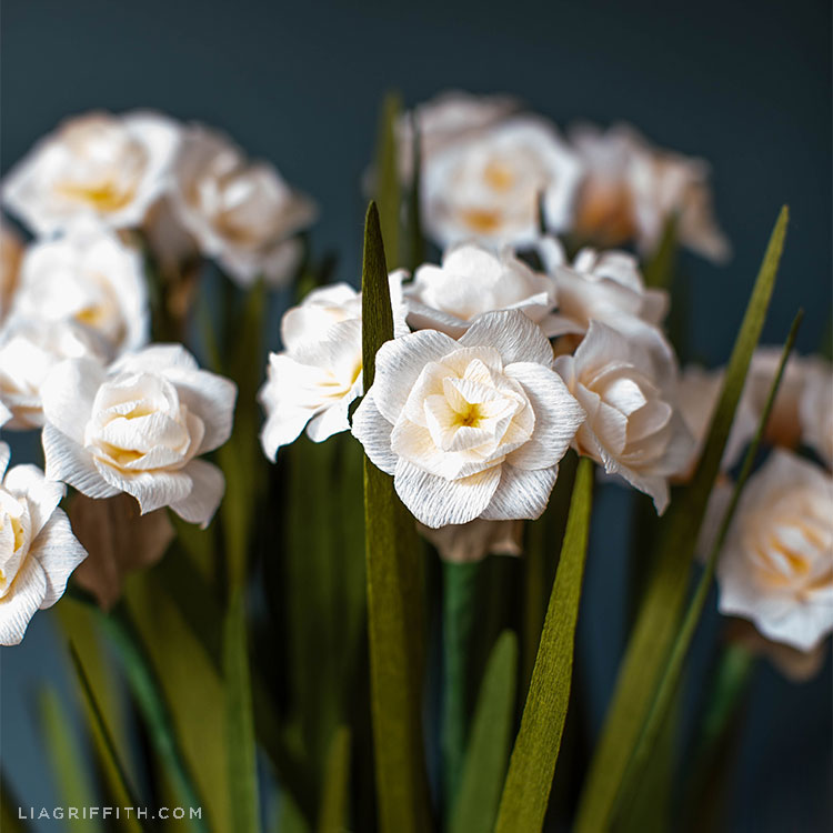 crepe paper double daffodils