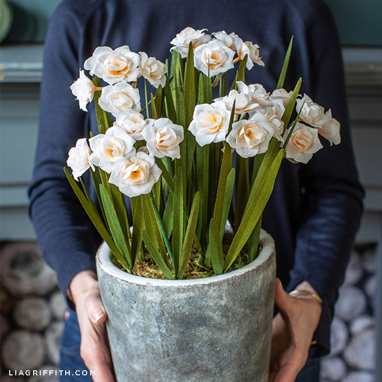 Person holding crepe paper double daffodils in pot in front of fireplace