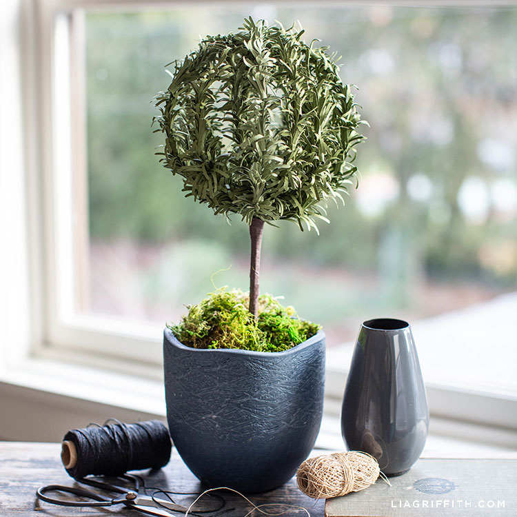 paper rosemary topiary in front of window next to small grey vase, scissors, black thread, and beige thread