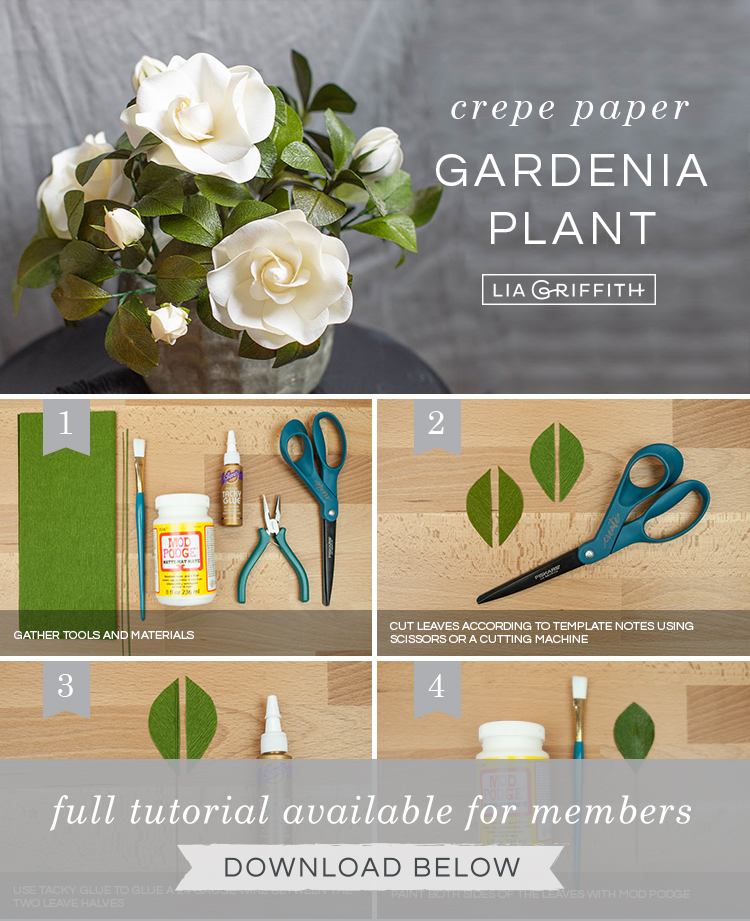 Photo tutorial for crepe paper gardenia plant by Lia Griffith
