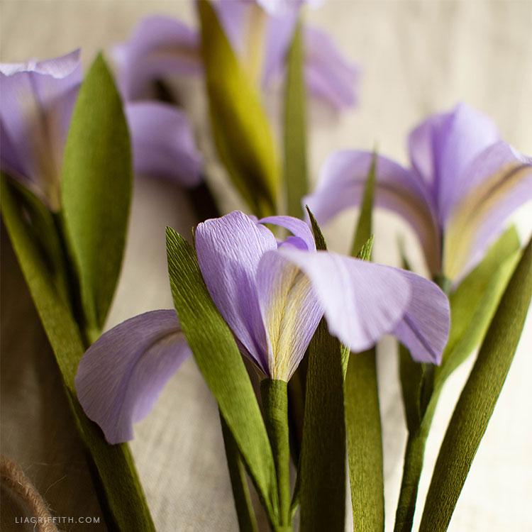 crepe paper dutch iris flowers in purple