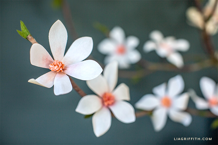 crepe paper tulip magnolias