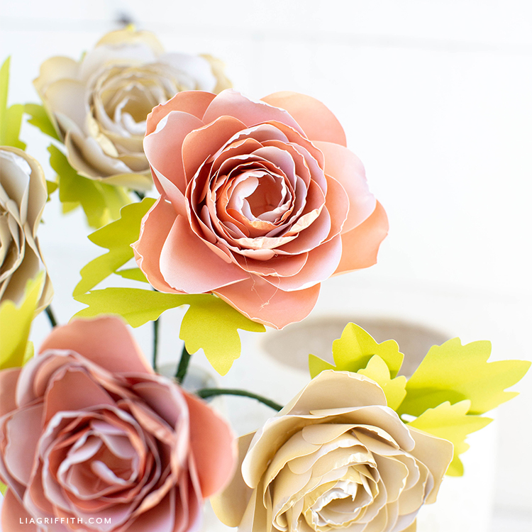 frosted paper ranunculus flowers