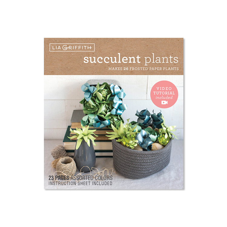 frosted paper succulents kit by Lia Griffith