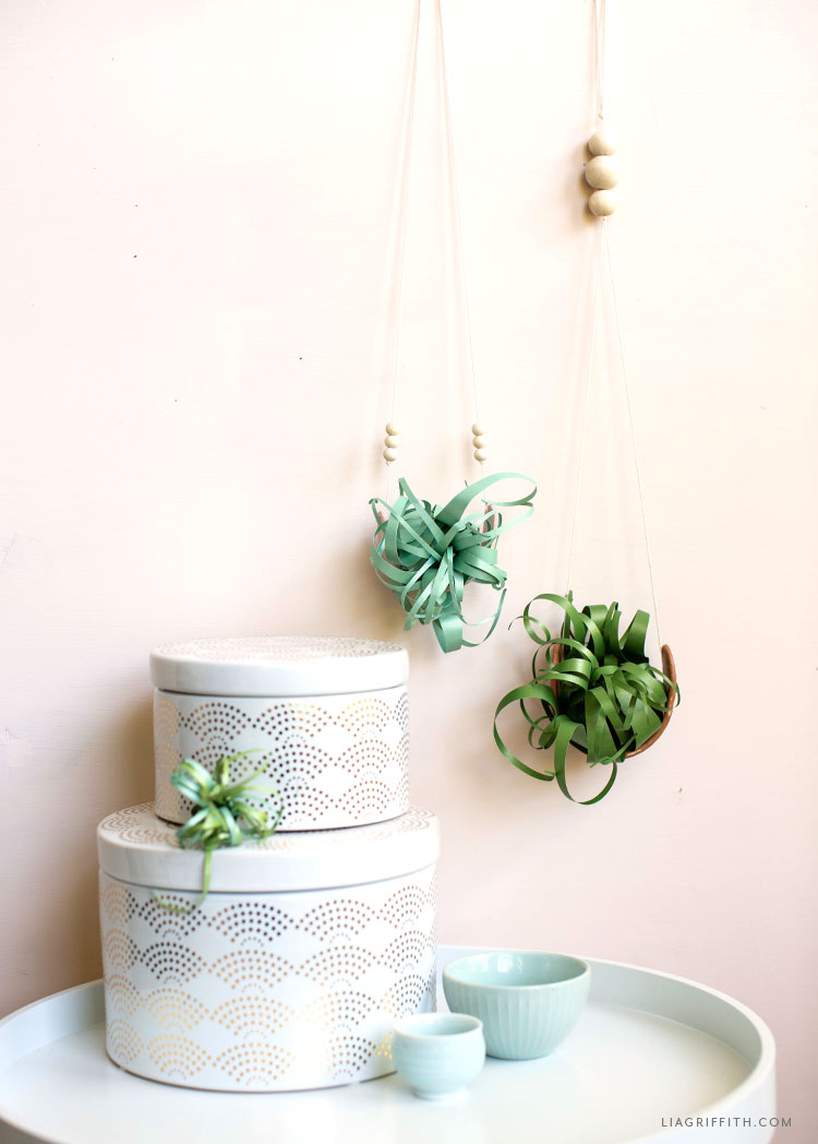 air plant holder with paper air plant on wall