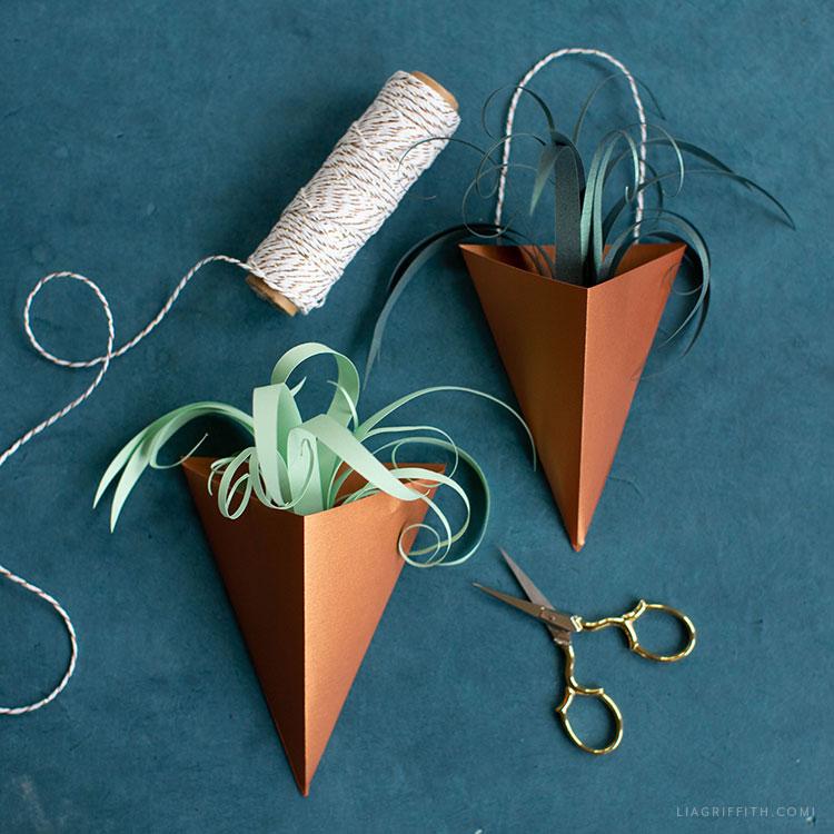paper air plant vases