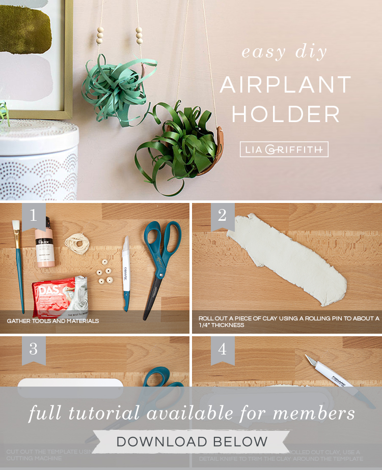 DIY step by step photo tutorial for air plant holder by Lia Griffith