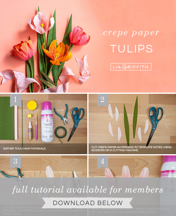 DIY step by step photo tutorial for ombré crepe paper tulips by Lia Griffith