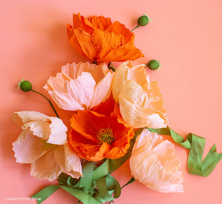 crepe paper poppies on coral background with green ribbon