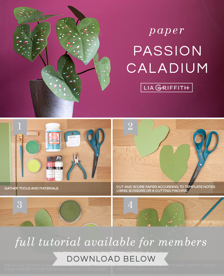 DIY step by step photo tutorial for paper passion caladium plant by Lia Griffith