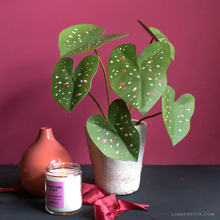 paper passion caladium plant next to pink vase, pink ribbon, and candle