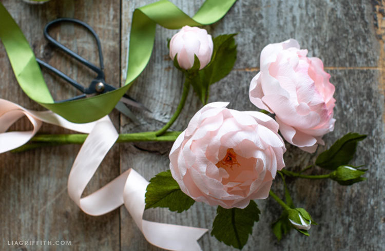 pink crepe paper Scarborough Fair roses and buds next to scissors and green and pink ribbon