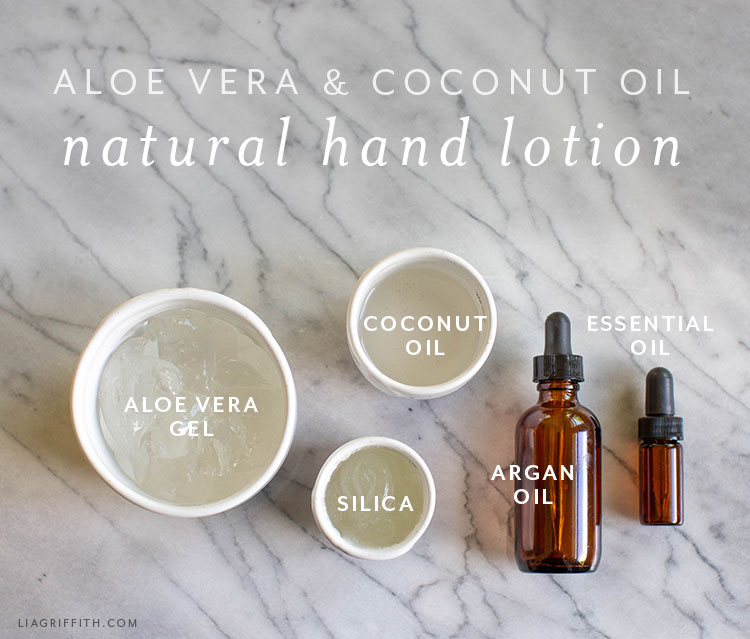 ingredients for aloe vera and coconut oil lotion
