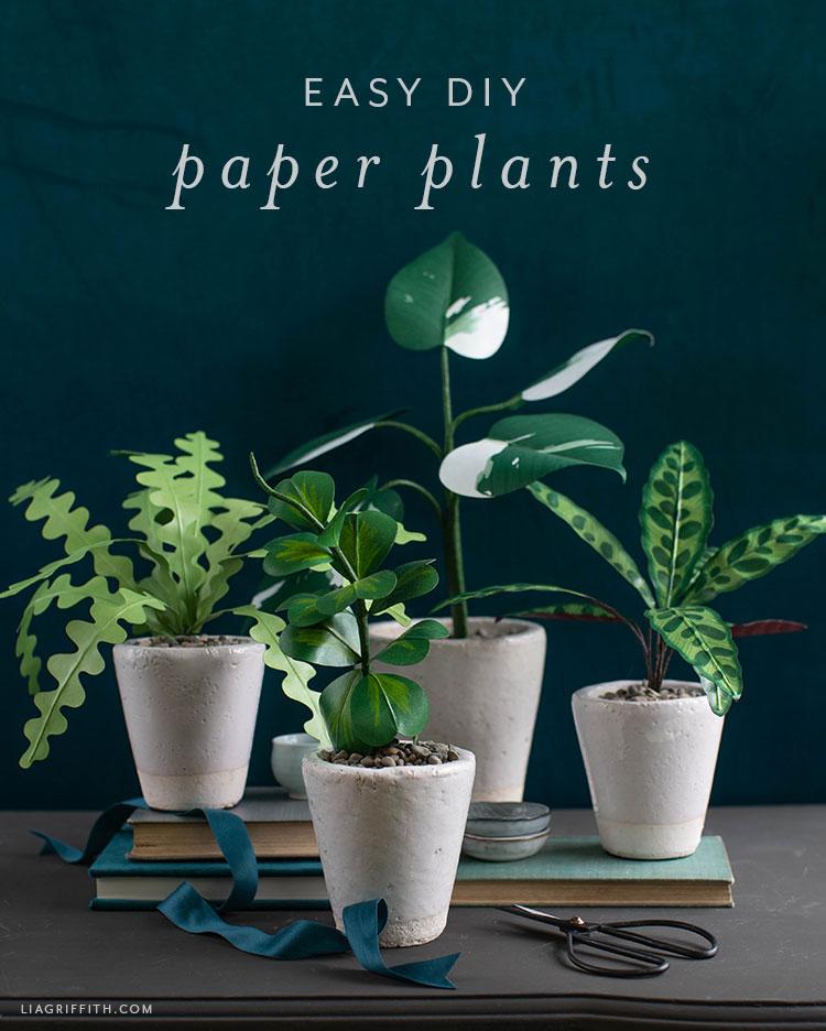 easy DIY paper plants