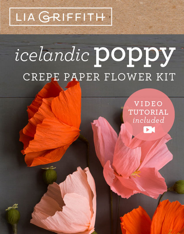 crepe paper poppy flower kit by Lia Griffith