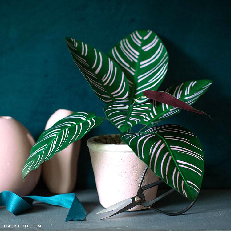DIY paper calathea with light pink strikes