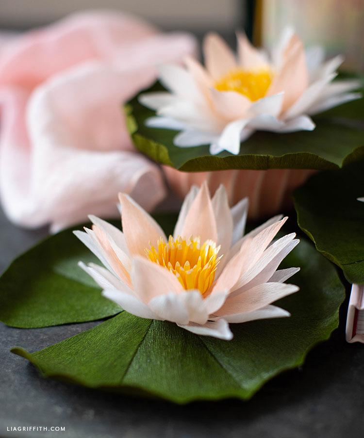 handmade crepe paper water lilies
