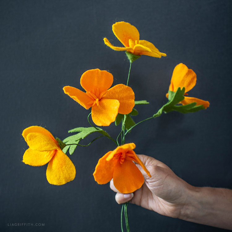 California poppies made out of felt