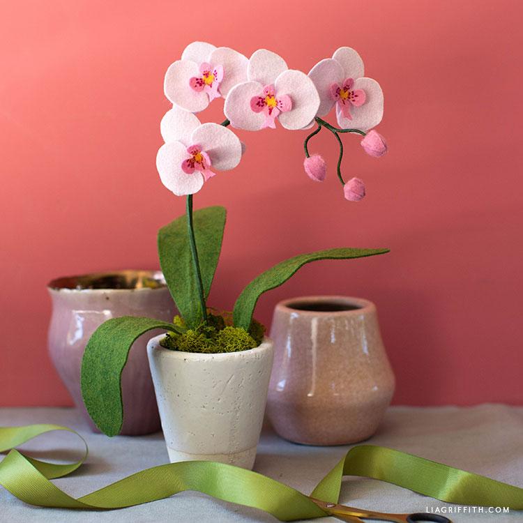 handmade felt orchid