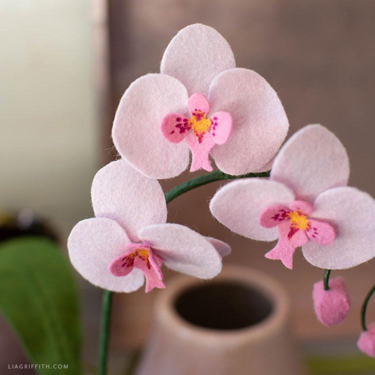 pink felt orchid