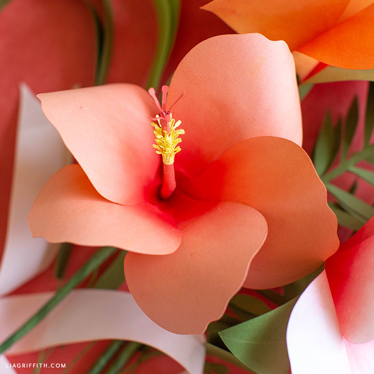 coral paper hibiscus flower