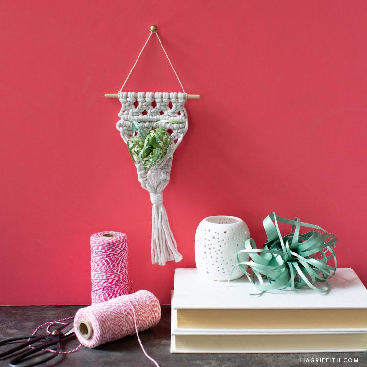 DIY macrame air plant holder
