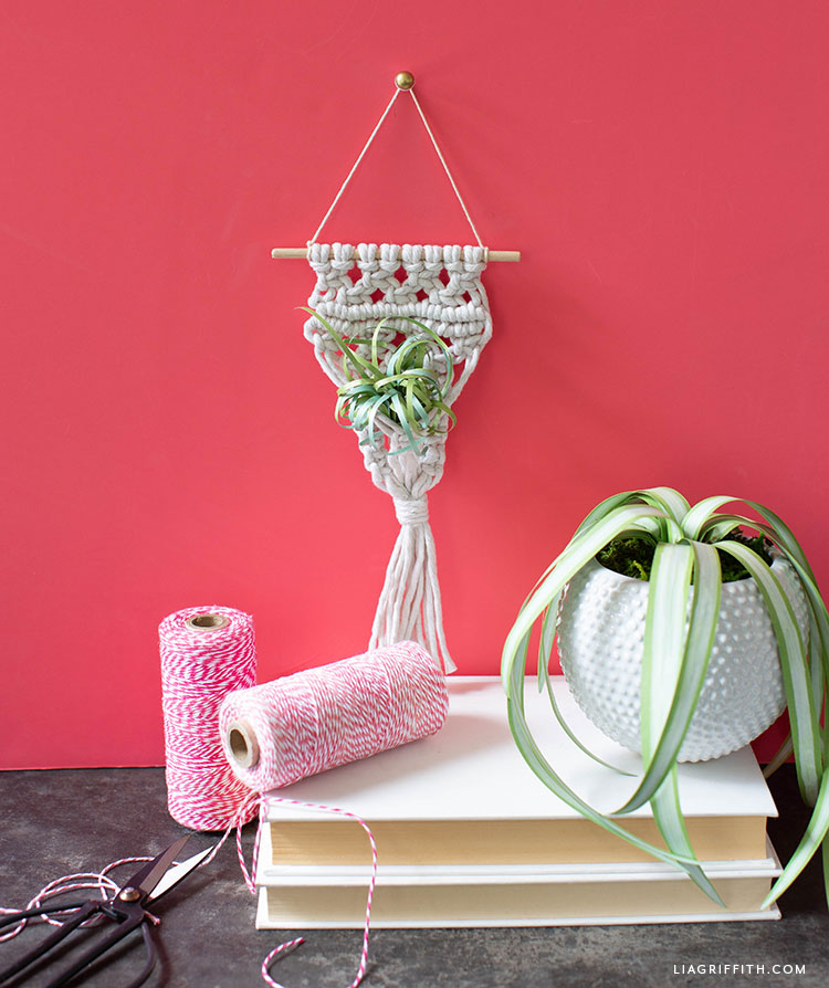 macrame air plant holder with paper plants