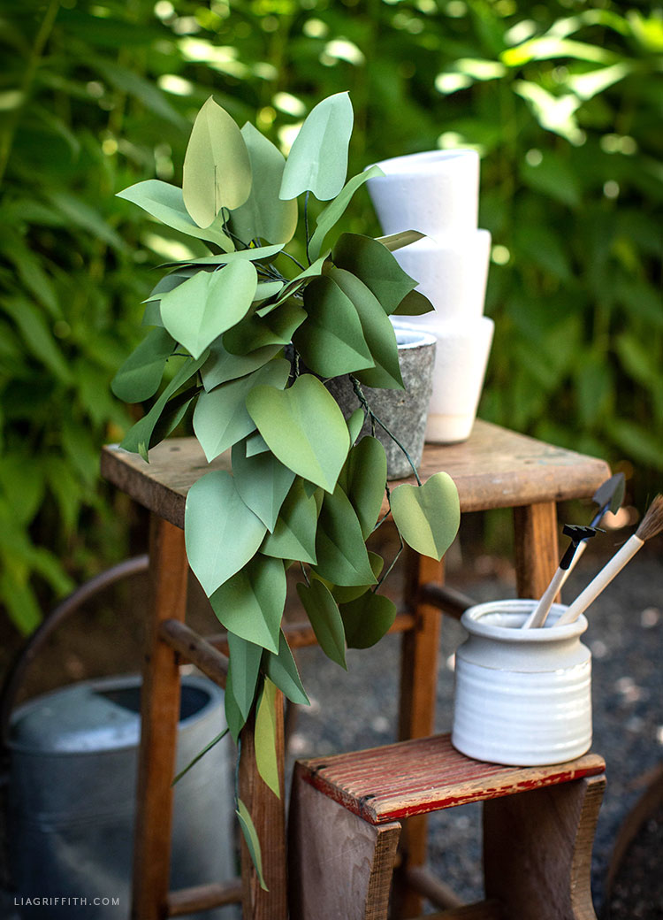 handmade paper heartleaf philodendron