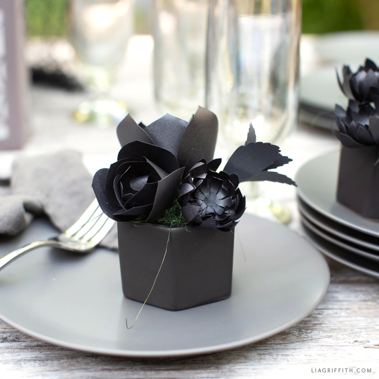 potted black paper succulents