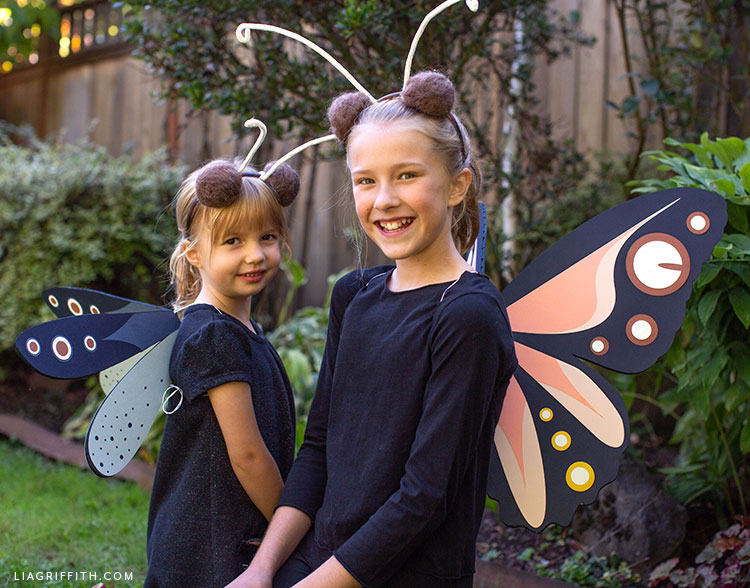 DIY dragonfly costume and butterfly costume