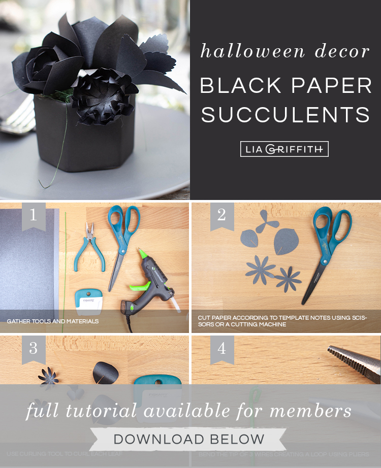 photo tutorial for black paper succulents by Lia Griffith