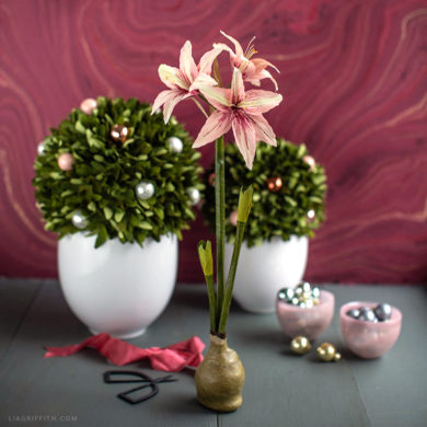 December Member Make: Crepe Paper Amaryllis with Waxed Bulb