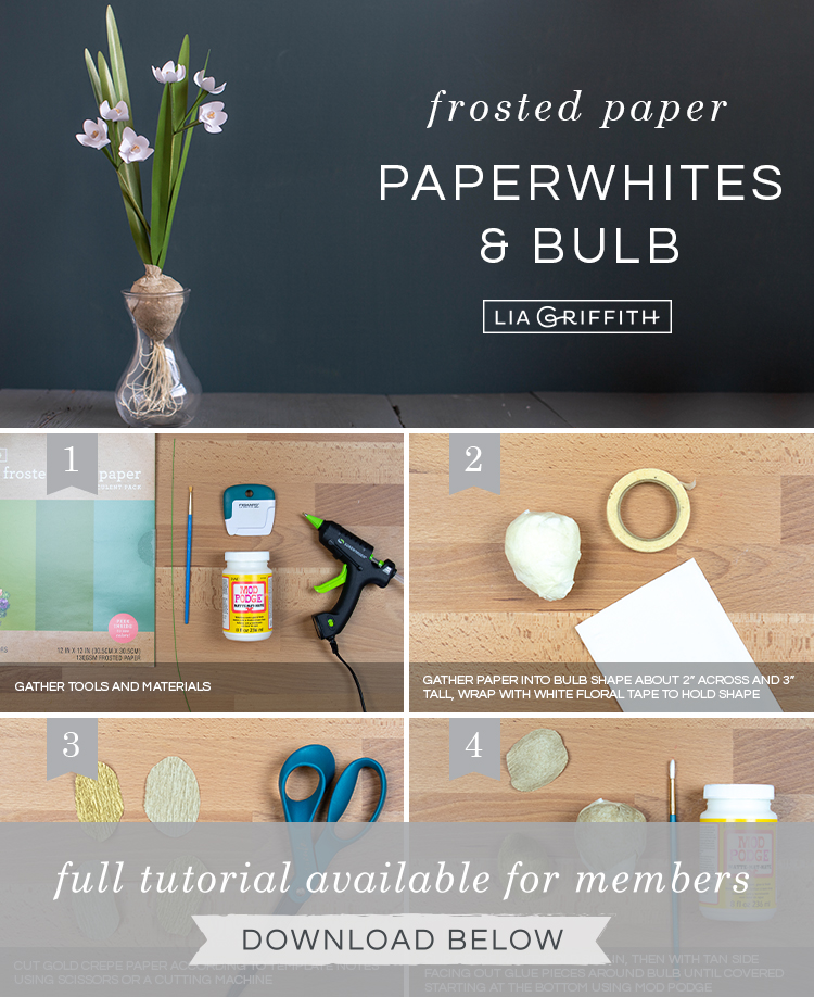 Photo tutorial for frosted paper paperwhites with crepe paper bulb