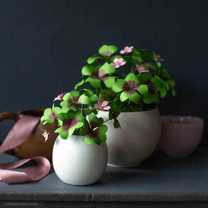 DIY lucky clover plants made from paper