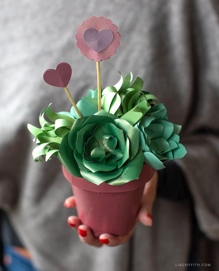 frosted paper succulent valentine