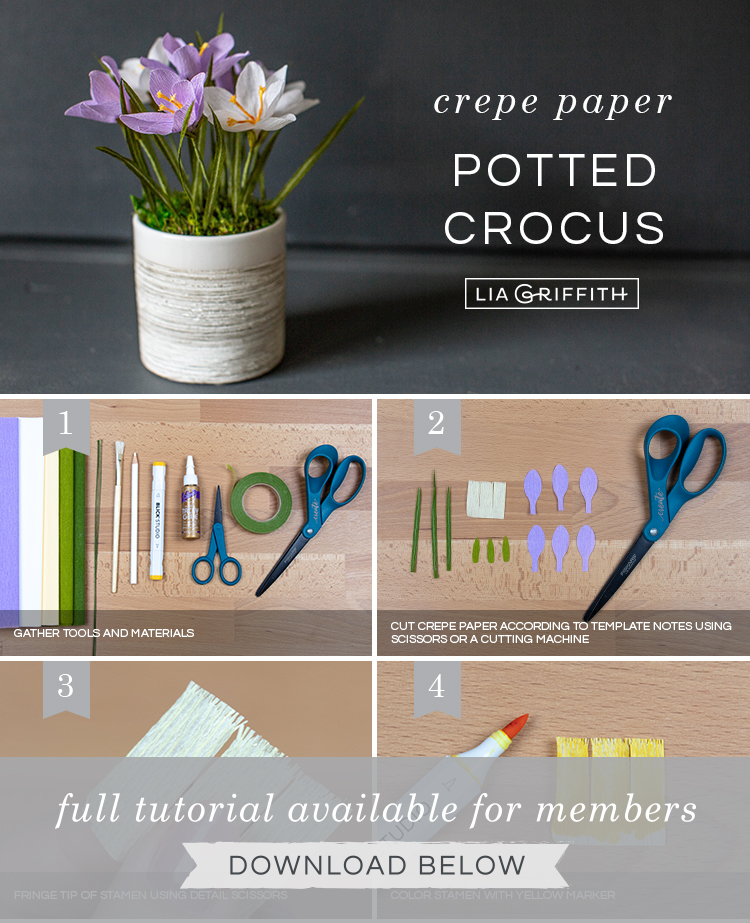 Photo tutorial for crepe paper crocus plant by Lia Griffith