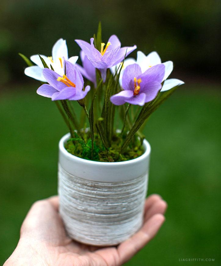 handmade crepe paper crocus plant