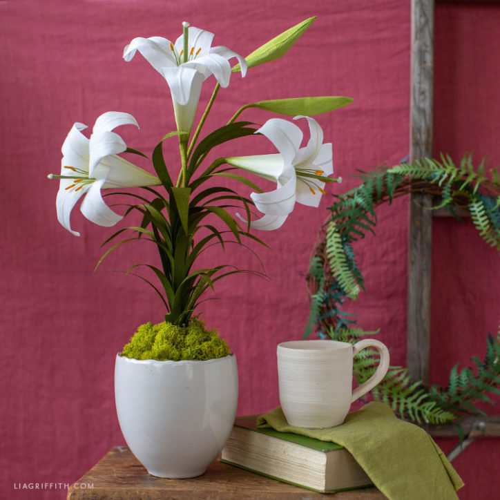 potted crepe paper Easter lily plant