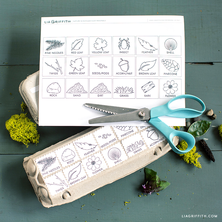 Free Printable Nature Scavenger Hunt For Kids Lia Griffith