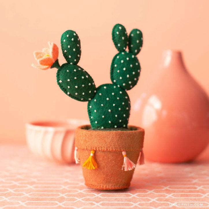 felt bunny ear cactus