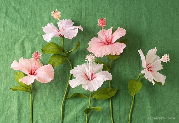 crepe paper hibiscus flowers