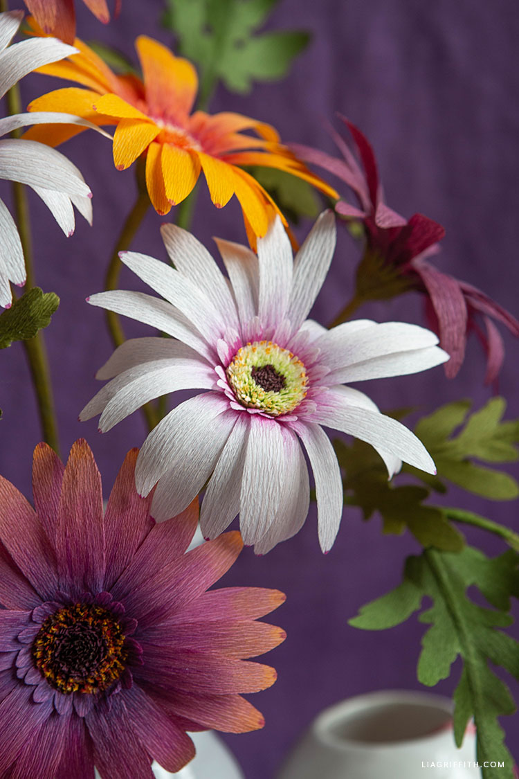 handmade crepe paper African daisies