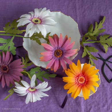 crepe paper African daisies